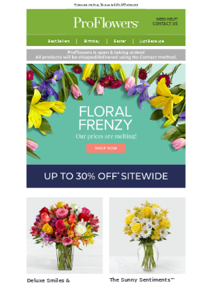 Up to 30% OFF - One Day Floral Frenzy Sale 🌷