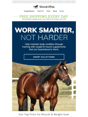 SmartPak Equine - Get the Topline & Weight You Want