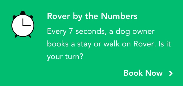 Every 7 seconds, a dog owner books a stay or walk on Rover. Is it your turn? | Book now
