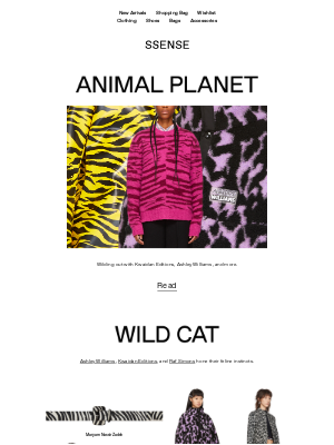 Animal Prints: Wilding Out with Kwaidan Editions and more