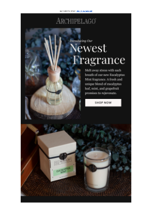 A Perfect Pairing: Meet NEW Eucalyptus Mint