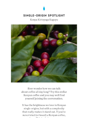 Blue Bottle Coffee - Single-Origin Spotlight | Kenya Kirinyaga Kaguyu