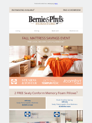 Bernie & Phyl's Furniture - Get 2 FREE Sealy Pillows 😴