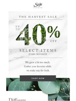 Saje Natural Wellness - The Harvest Sale starts now