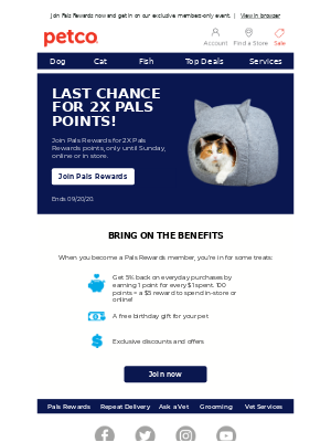 Petco - It's the last day to earn double Pals Rewards points!