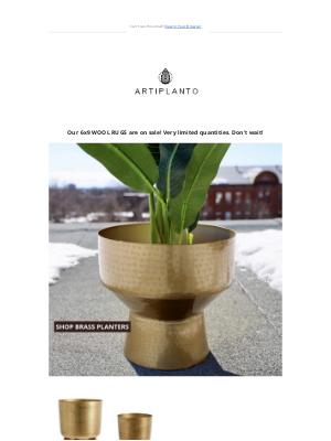 artiplanto - 💛 Luxury. Brass. Planters.