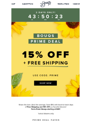 🤩It's Prime Time🤩 15% Off PLUS Free Shipping!
