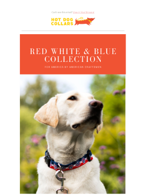Hot Dog Collars - Shop The Red, White & Blue Collection at HDC!