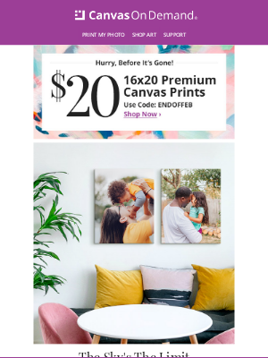 Canvas On Demand - Only $20 For A 16x20 Canvas Print