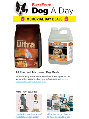 The Best Memorial Day Deals for 🐶