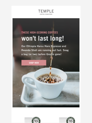 Temple Coffee Roasters - These coffees won't last long!
