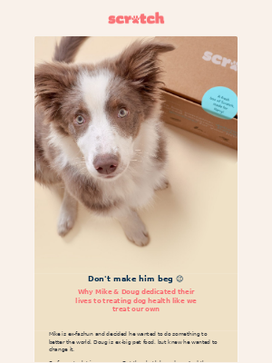 Scratch Pet Food (AU) - Because, dogs!