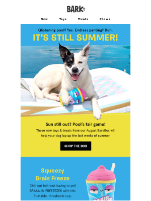 Fetch the best from our August BarkBox.