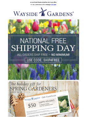 National Free Shipping day! Enjoy free shipping with no minimum