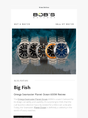 Bob's Watches - The Omega Seamaster Planet Ocean 600m