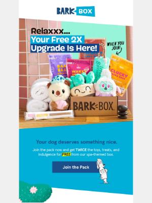 BarkBox - 🤑 Inside: $35 of FREE toys & treats for Dexter
