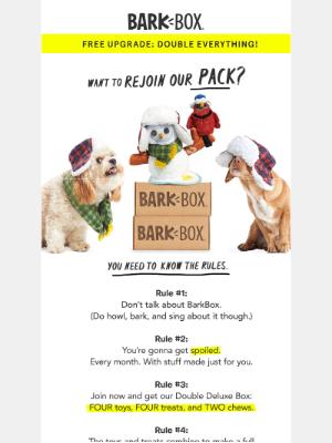 🤯 Double the dog joy for zero extra dollars?!