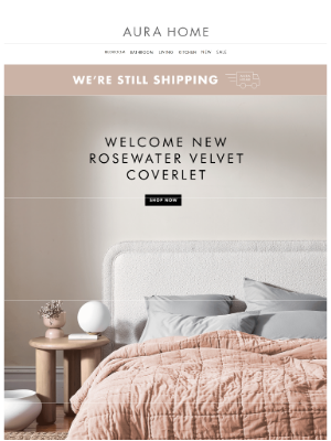 Aurahome - 💖 Welcome New Rosewater Velvet Coverlet 💖 & New Chambray Coverlets in Smoke & Dove!