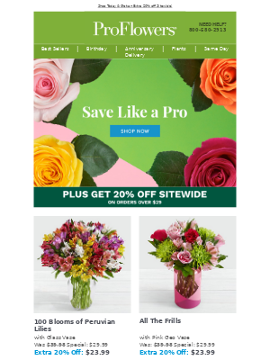 Save Like a Pro! EXTRA 20% OFF Sitewide