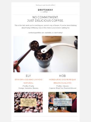 Driftaway - No subscription, no problem! Try Driftaway Coffee one-off.