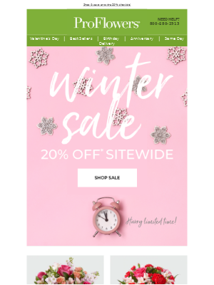 Winter Sale! Save 20% SITEWIDE for a limited time!