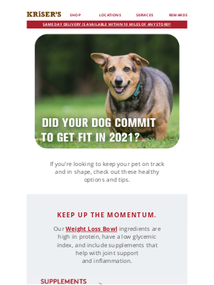 Kriser's Natural Pet - Remember Your Dog's New Year's Resolutions?