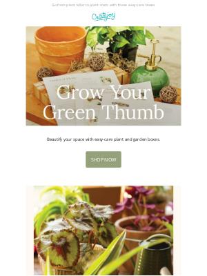 Cratejoy - Plant Boxes That Don't Succ 🌵