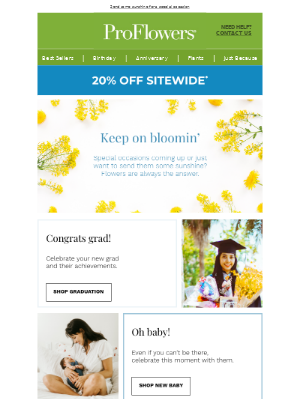 Keep on Bloomin'! 20% OFF flowers for all occasions