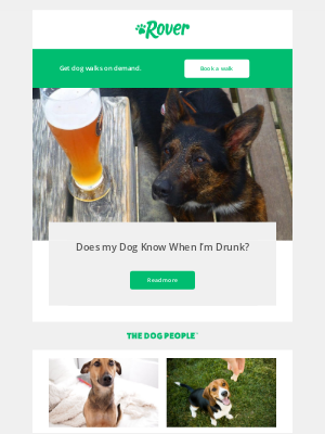 Can your dog tell if you've had a drink? 🍷
