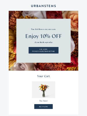 UrbanStems - Make someone's day...10% OFF your order