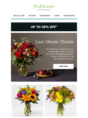 ProFlowers - Send Last-Minute Thanks: Up to 30% Off Gifts