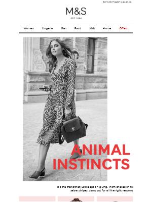 Wild about… animal print