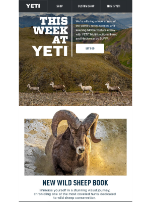 YETI - What a Week: Get Protection from the Elements