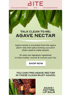 Bite Beauty - Thirsty for knowledge about agave nectar? 🌵 🌊