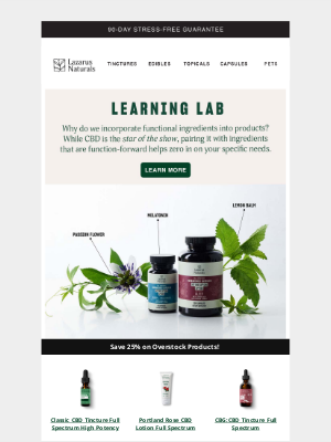 Lazarus Naturals - Do functional ingredients really help?