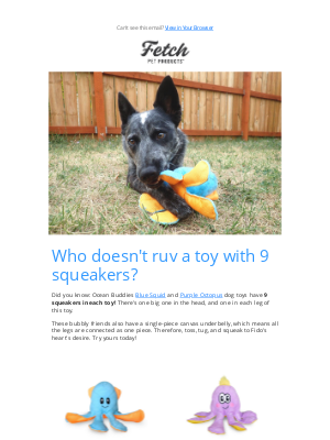 Fetch Pet Products - 🌟 9-Squeaker Dog Toy!