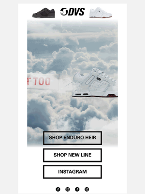 DVS Shoes - Enduro Heir! You'll Float Too!