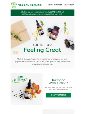 Global Healing Center - Give the Gift of Feeling Great