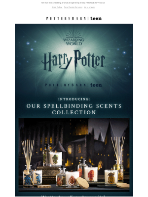 West Elm - NEW spellbinding scents made for every Harry Potter™ fan ✨