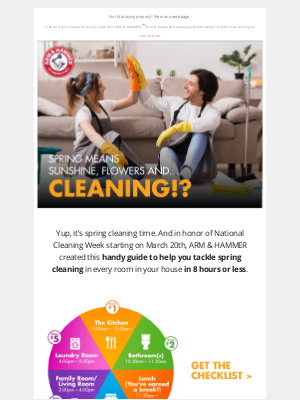 armandhammer.com - How to Spring Clean Your Home in 1 Day!