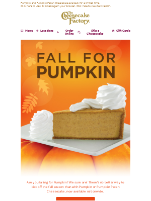 The Cheesecake Factory - Pumpkin is Back!