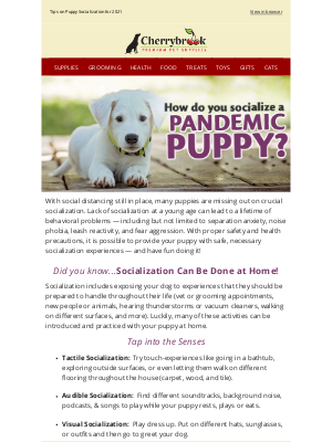 Cherrybrook Pet Supplies - Socialize a Pandemic Puppy