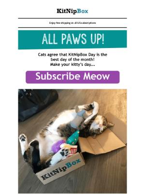 KitNipBox - Cats Agree...🐾🐾🐾🐾🐾🐾🐾🐾