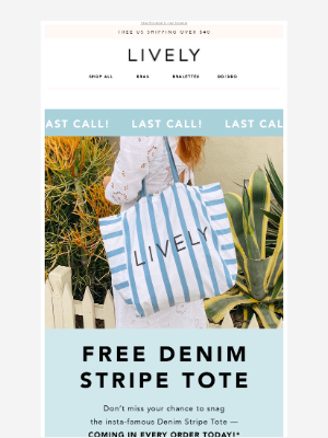 LAST CALL FOR FREE DENIM TOTES!