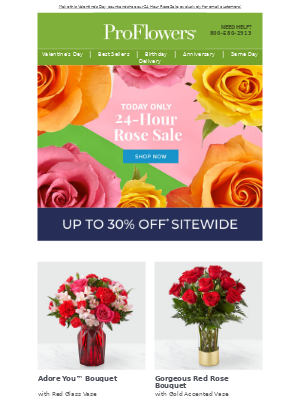 24 Hour ROSE SALE is ON! 🌹 Save up to 30% Sitewide