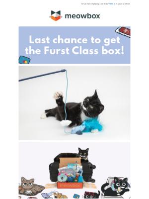 meowbox - Last Chance to Get the Furst Class Box ✈️