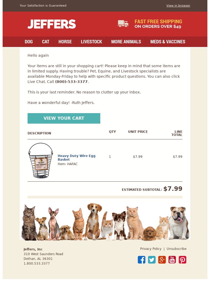 Abandoned cart email example from Jeffers