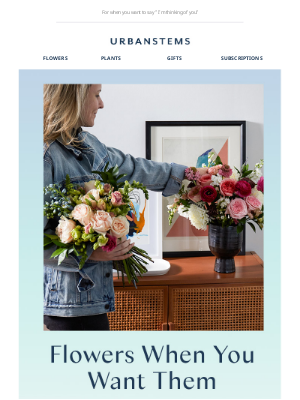 New flower subscriptions