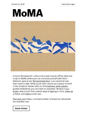 Museum of Modern Art Store (MoMA) - Go for a swim with Matisse