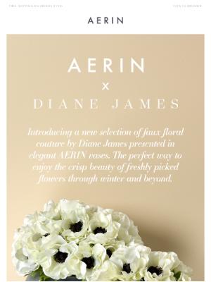AERIN LLC - AERIN x Diane James